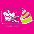 The Frozen Yoghurt Factory