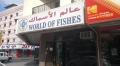 World of Fishes