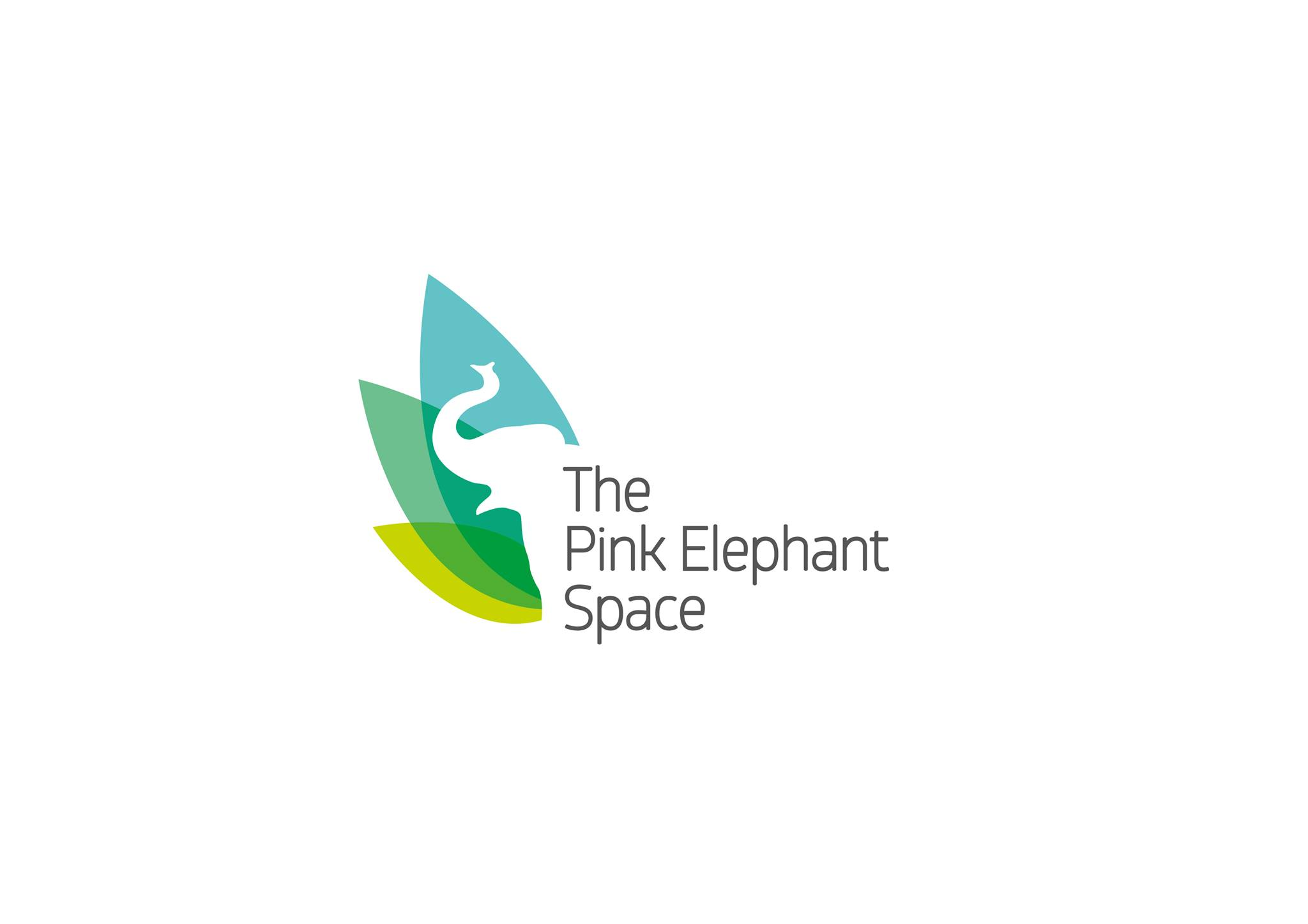 The Pink Elephant Space