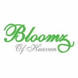Bloomz of Heaven