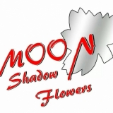 Moon Shadow Flowers