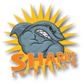 Sharks Swim Team