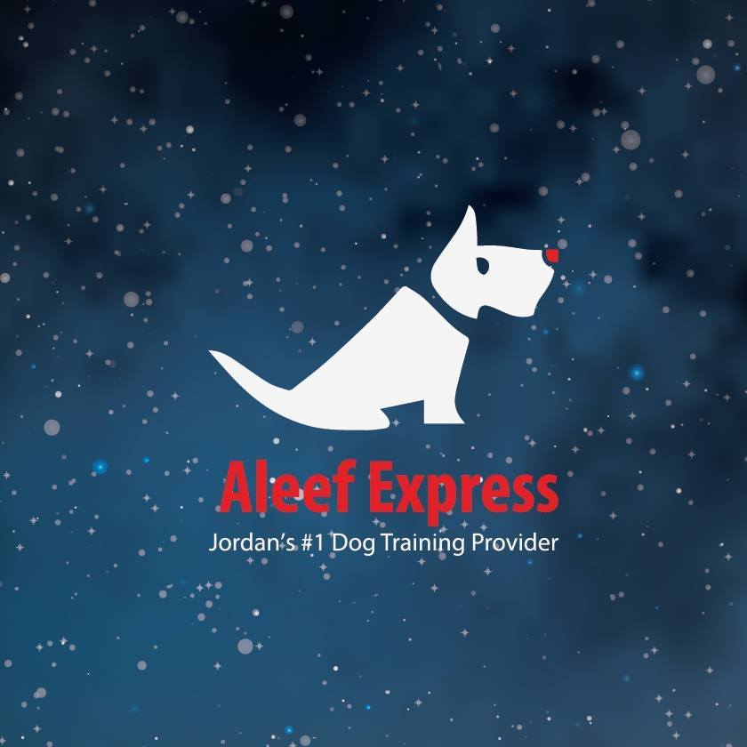 Aleef Express